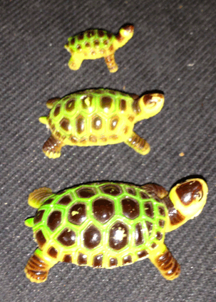 Tortoise, Turtle, Plastic Toys, Collectible animal figures